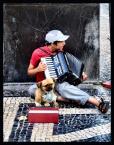 """Cigana """"Lizbona"""" (2007-12-19 15:55:40) komentarzy: 4, ostatni: kici kici"""