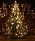 """asiasido """"Wesołych Świąt :)"""" (2007-12-23 19:56:32) komentarzy: 21, ostatni: fajowe"""