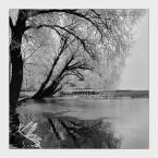 """Em B. """""""" (2007-12-23 20:42:43) komentarzy: 12, ostatni: Opowieści znad jeziora ... ładny zakątek :-)"""