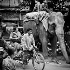 """slavcic """"Ulice stolicy"""" (2008-01-16 12:34:40) komentarzy: 46, ostatni: to świetne jest foto ... całe Indie (jak dla mnie bo tam nie byłem ...:)"""