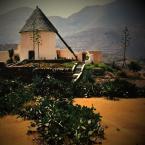 "ojosdebrujo ""molino sin alas no sabe tocar el viento /naranjada/"" (2008-01-17 10:30:21) komentarzy: 47, ostatni: świetny pejzaż"