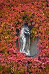 """zyku """"...jesienią"""" (2008-01-22 22:29:55) komentarzy: 1, ostatni: szkoda,że nie widac całego posągu"""