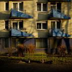 """_ania """""""" (2008-01-28 12:16:11) komentarzy: 7, ostatni: WZRUSZeNIE. [Pawel]"""