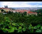 """amator_sliwek """"Praga"""" (2008-01-29 22:53:43) komentarzy: 4, ostatni: hmmm...."""