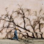 """michał """""""" (2008-02-12 18:58:10) komentarzy: 27, ostatni: jedna z fot które najbardziej lubię...z samego siebie..."""