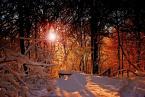 "bartmark ""..."" (2008-02-12 19:44:10) komentarzy: 23, ostatni: piękna, ciepła zima"