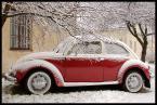 """Piowa """"Zima na Bielanach"""" (2008-02-13 11:43:20) komentarzy: 7, ostatni: wspomnień czar, miałem takiego tylko żółty był, ehh"""