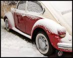 """Piowa """"Zima na Bielanach 2"""" (2008-02-13 11:56:07) komentarzy: 8, ostatni: bardzo fajna seria"""
