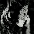 """ojosdebrujo """"oczy szeroko zamknięte /caffé nero/"""" (2008-02-15 20:54:17) komentarzy: 30, ostatni: Pięknie !"""