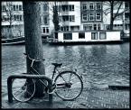"""Cigana """"Amsterdam"""" (2008-02-17 18:16:26) komentarzy: 2, ostatni: bardzo mi się podoba"""
