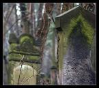 """arche """"Porozmawiajmy"""" (2008-02-26 21:58:28) komentarzy: 19, ostatni: dzięki :) mam nadzieję że się kiedyś z nami wybierzesz"""