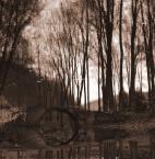 """Wilkowaty """"Impresja..."""" (2008-02-27 13:59:00) komentarzy: 13, ostatni: Dobre miejsce ukazane w b.dobry sposób, pozazdrościć"""