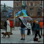 """pespe """"Pieskie życie"""" (2008-03-12 18:39:01) komentarzy: 8, ostatni: ciekawie   się  tu dzieje"""