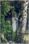 """Zbigniew Fidos """""""" (2008-03-22 11:18:38) komentarzy: 22, ostatni: No to o zdjęciu: Podoba mi się, a co! :)..."""