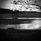 """rudamary """"burzysko02"""" (2008-03-25 10:08:12) komentarzy: 3, ostatni: Z klimatem"""