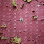"""Nickita """"..."""" (2008-04-14 19:05:40) komentarzy: 31, ostatni: pewnie powstanie tam zamknięty apartamentowiec . . . """"w fajnych okolicznościach przyrody"""" ..."""