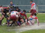 """Tade """"Rugby"""" (2008-04-18 18:33:59) komentarzy: 2, ostatni: woda dobrze robi.Pozdrawiam"""