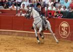 """Marta Staszczak """"Taniec ze śmiercią w rytmie flamenco..."""" (2008-04-23 21:34:26) komentarzy: 17, ostatni: jeździec stał się widzem... nie jestem przekonany, że tak miało być..."""