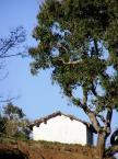 """Maciek Froński """"Dom w Górach Nilgiri"""" (2008-04-25 10:29:30) komentarzy: 0, ostatni:"""