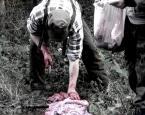 """antropina """"dawno temu w trawie"""" (2008-04-29 19:03:05) komentarzy: 3, ostatni: a ja wlasnie kolacje jem...bleee"""