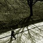 """Nickita """"w cieniu cienia"""" (2008-04-29 20:11:56) komentarzy: 5, ostatni: ciekawe foto"""