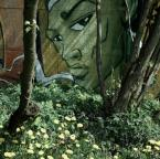 """Daria Solar """"Graffiti in green"""" (2008-04-29 20:42:02) komentarzy: 5, ostatni: Wiesz co Daria? Musimy się na plenerek umówić."""