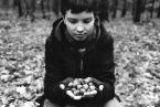 """basiakosciak """"dary lasu"""" (2008-05-05 11:01:42) komentarzy: 1, ostatni: podoba mi się"""