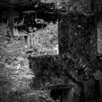 """fand """"I"""" (2008-05-12 16:41:50) komentarzy: 6, ostatni: Bardzo lubię roztoczańskie cmentarze z kamieniarką bruśnieńską. Świetne:)"""