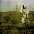 """ajsikel """"lonesome traveller , Kichot, don."""" (2008-05-21 00:18:02) komentarzy: 28, ostatni: fajne jest"""