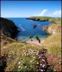 """robert37 """"morskie zakamarki ....."""" (2008-05-23 10:38:48) komentarzy: 13, ostatni: niesamowity widok"""