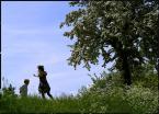 """Nagalfar """"Zabawy"""" (2008-05-31 19:21:00) komentarzy: 0, ostatni:"""