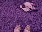"""Mirka Lubieszna """"Decay of love"""" (2008-06-14 19:16:44) komentarzy: 7, ostatni: oj wieprzówa to życie tylko  oj wieprzówa"""