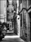 """Cigana """"barcelona"""" (2008-06-21 22:40:48) komentarzy: 3, ostatni: ładne b&w"""