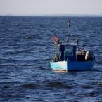 """Dicky """"na spokojnych falach zatoki"""" (2008-06-26 08:35:25) komentarzy: 13, ostatni: sorki, - """"odkryjemy nowe zatoki"""" :)"""