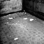 """drax """"*"""" (2008-07-21 14:17:05) komentarzy: 11, ostatni: kurcze mroczne masz wnętrza. kiedy powrócą portrety?"""