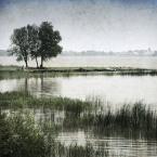 """DELF """"krajobraz zwyczajny"""" (2008-07-30 09:01:03) komentarzy: 42, ostatni: za kadr"""