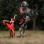 """Gosia Mąkosa """"Flamenco"""" (2008-08-11 18:02:01) komentarzy: 5, ostatni: coś niesamowitego!"""