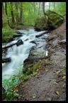 """vch22222 """"Czartowe Pole - rzeka Sopot"""" (2008-08-20 11:02:00) komentarzy: 7, ostatni: zdania jestem takiego ze niebawem ,,warszawiaki"""" zadepczą wszystko :P"""