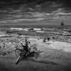 """klimat """""""" (2008-09-18 11:43:48) komentarzy: 37, ostatni: zapodany klimat..."""