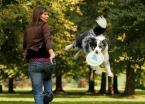 """Małgorzata Kalbarczyk """"Dog Chow Disc Cup 2008"""" (2008-09-29 10:48:00) komentarzy: 32, ostatni: zalatujące raczej :P"""