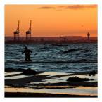 """sejlor """"Morskie safari"""" (2008-09-30 09:29:31) komentarzy: 24, ostatni: Fajne, mi się kojarzy z pomnikiem w wodzie :)"""