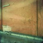 "a m i ""..."" (2008-10-02 00:57:08) komentarzy: 8, ostatni: kompozycja."