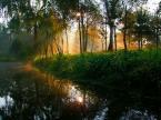 """dogfog """"Diamentowy poranek."""" (2008-10-05 19:45:00) komentarzy: 41, ostatni: w świetle poranka słońce na wodzie - czasem utonąć można w przyrodzie, która nas nęci swymi barwami, co jakby z tęczy są kolorami..."""
