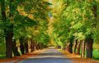 """sonique """"W drogę ..."""" (2008-10-09 15:28:27) komentarzy: 12, ostatni: też się podoba"""