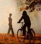 """myszok """"jesień"""" (2008-10-16 19:26:49) komentarzy: 17, ostatni: Bardzo ładne:)"""