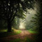 """E.K. """"Droga ku nadziei."""" (2008-10-17 16:35:24) komentarzy: 43, ostatni: elegancko swiatlo ogarniete"""