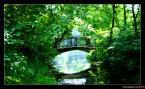 """lukaszkomorek """"Bridge"""" (2008-10-20 18:54:29) komentarzy: 4, ostatni: Ładne kolory. Dobry kadr :) Niestety nie mam jeszcze możliwości oceniania... ale gdybym miał dał bym 8 :)"""