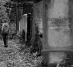 """myszok """"..."""" (2008-10-22 17:03:03) komentarzy: 5, ostatni: Wyjść z kamieni za życia.."""