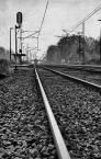 """marcin8530 """"Jedzie pociąg z daleka..."""" (2008-10-27 14:33:29) komentarzy: 18, ostatni: fajny kadr!"""