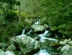 """krupen """"płynie..."""" (2008-11-11 16:33:08) komentarzy: 3, ostatni: pięknie płynie ;) coś jest fajnego magicznego w tym zdjęciu...tak to widzę ;) pozdrawiam :)"""